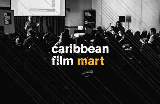 Launch of the Caribbean Film Mart, Database