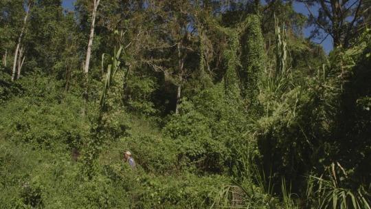 Image Caption: Featured image for 'El Mundo Que Nos Rodea (The Surrounding World)'.