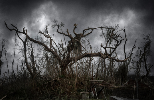 Image Caption: Featured image for 'Dominica: Three Years After Hurricane Maria'.